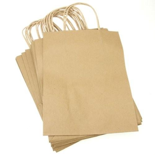 túi giấy kraft + dây giấy xoắn